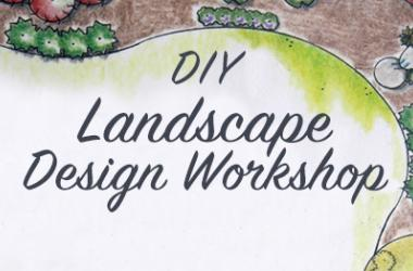 DIY Landscape Design